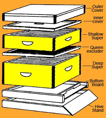 Beehive-sections