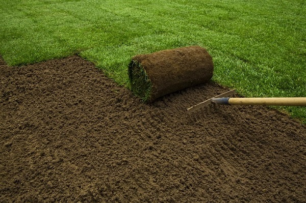 Cover mud with sod