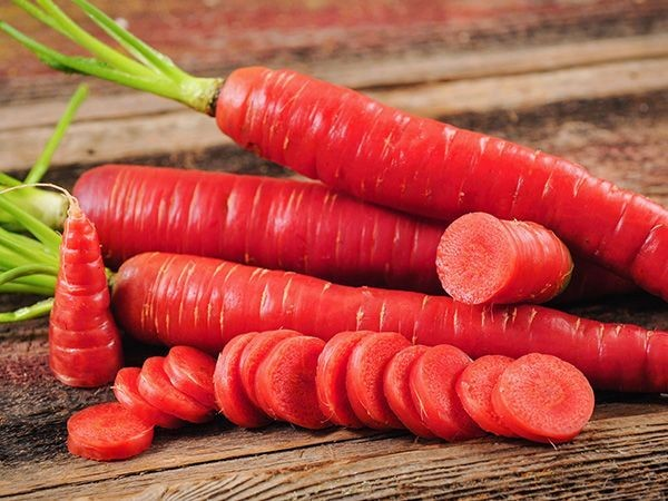 Kyoto Red Carrot