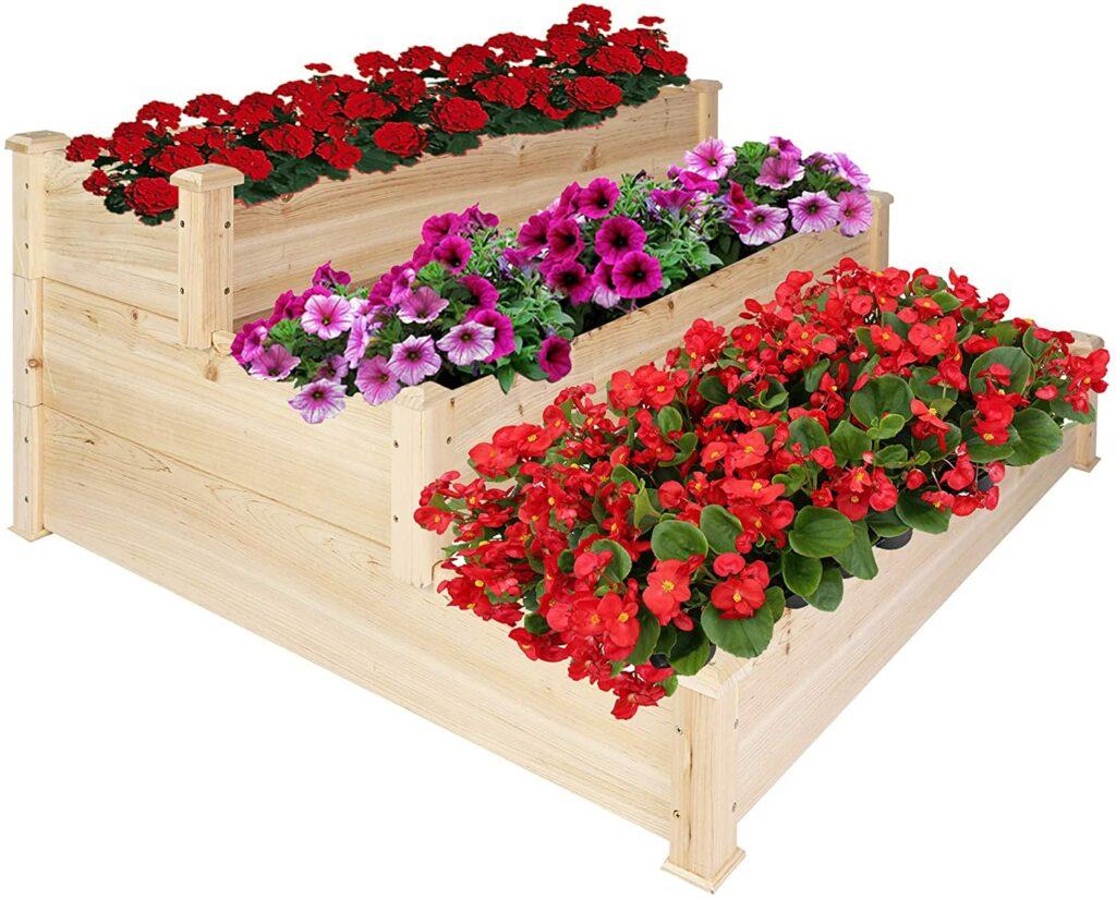 Raise Your Rose Bush Beds