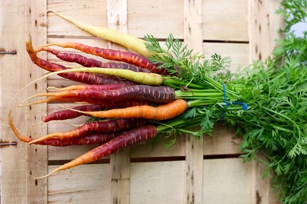 Variety of Carrots