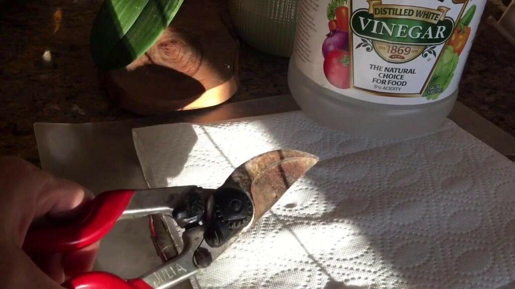 How to remove rust in garden tools using vinegar