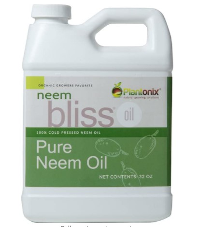 Neem Bliss Neem Oil Fungicide Review