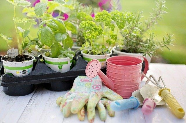 Tips in removing rust in garden tools and best practices to keep them rust-free