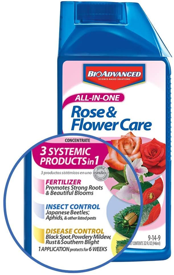 Bayer Advanced All-in-One Rose and Flower Care for fertilizing knockout roses