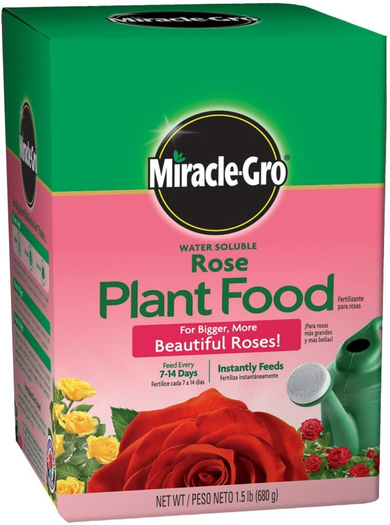 Miracle-Gro Plant Food for fertilizing knockout roses review