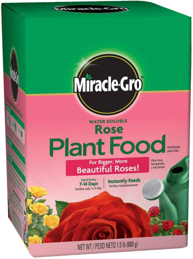 Miracle-Gro Rose Plant Food Review