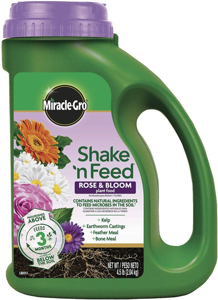 Miracle-Gro Shake N Feed Rose & Bloom Review