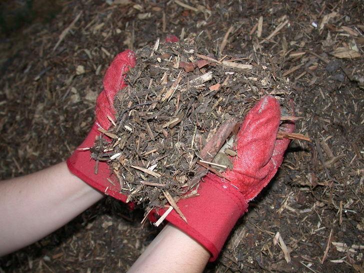 Reusing Old Mulch