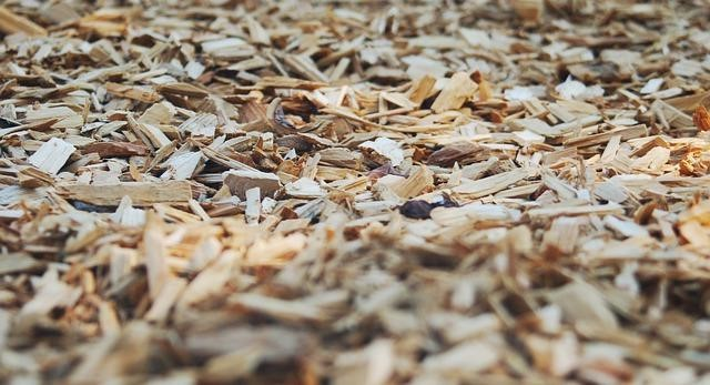 Using wood chips to control weeds