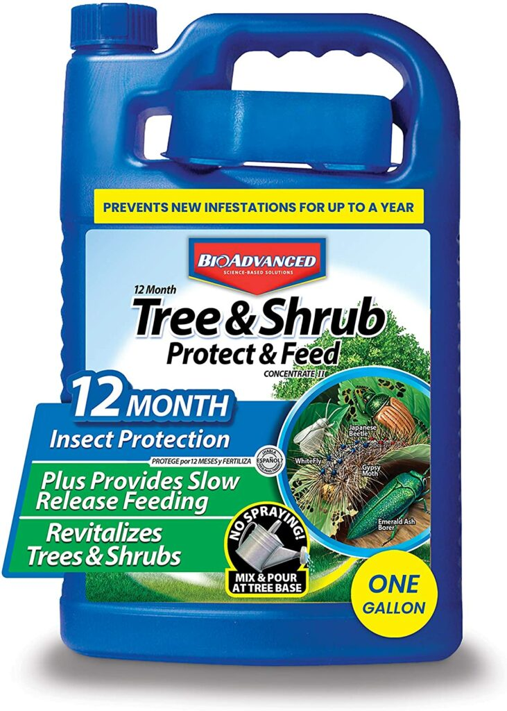 Best fertilizers for arborvitae: BioAdvanced Shrub Protect & Tree Food