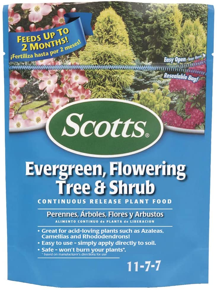 Best fertilizers for arborvitae: Scotts Evergreen Flowering Tree & Shrub Continuous Release Plant Food