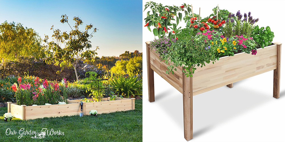 10 best raised garden beds for small spaces