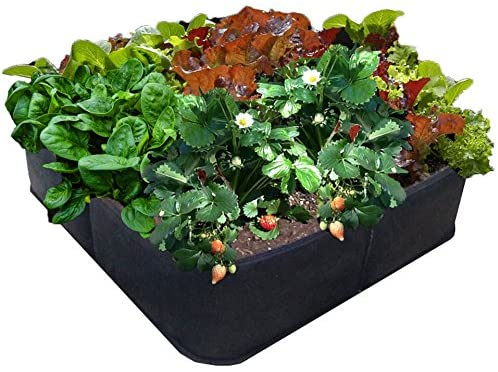 Victory 8 Fabric Raised Bed 2 ft X 2 ft Review