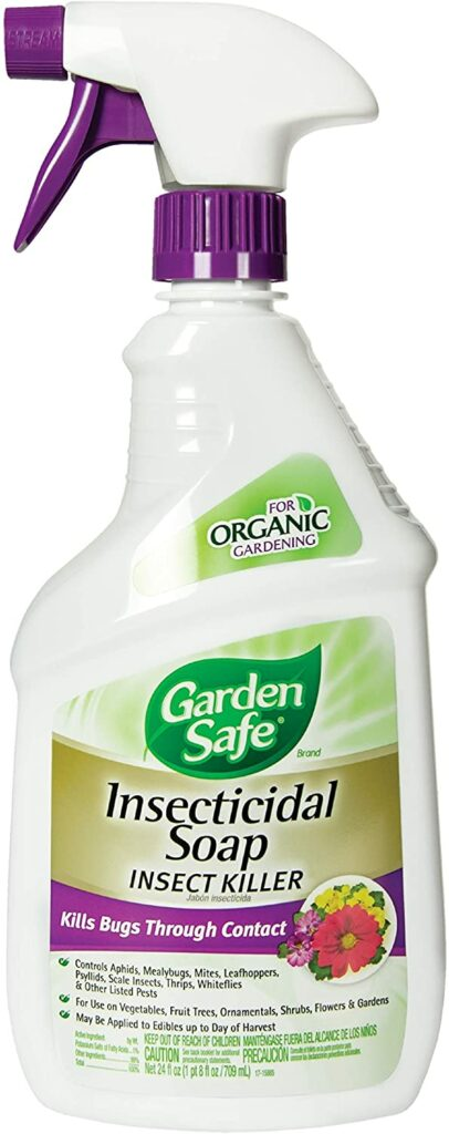 Garden Safe's Insecticidal Soap Insect Killer, Ready-to-Use Review