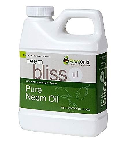 Organic Neem Bliss 100% Pure Cold Pressed Neem Seed Oil Review