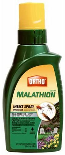 Ortho MAX Malathion Concentrate Insect Spray Review