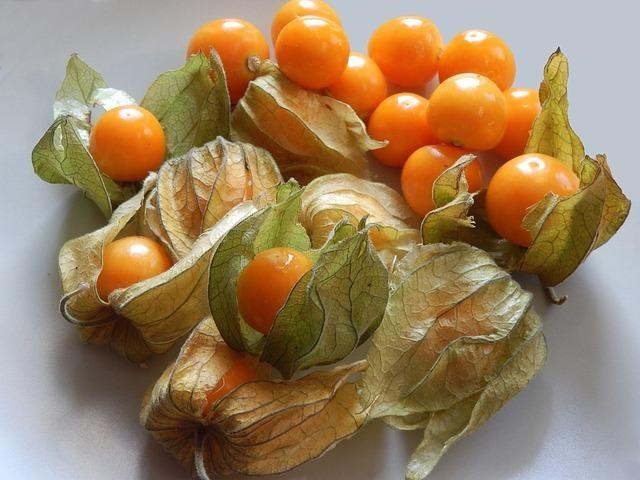 Are Tomatillos Toxic?