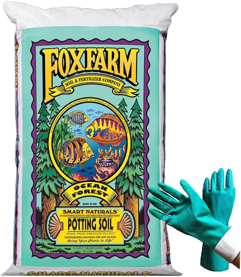FoxFarm Ocean Forest Potting Soil Review