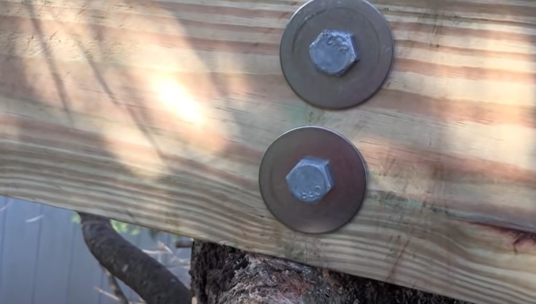 How To Attach A Beam To A Tree?