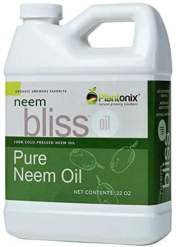 Neem Bliss Organics Pure Neem Oil Review