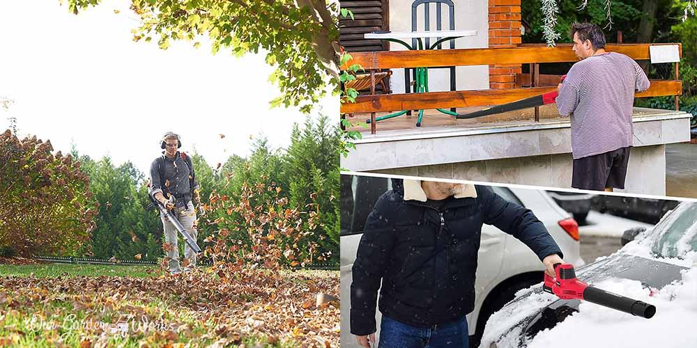 10 Best Leaf Blower For Home Maintenance