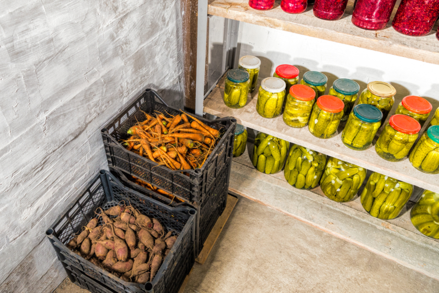 Storing in a root cellar