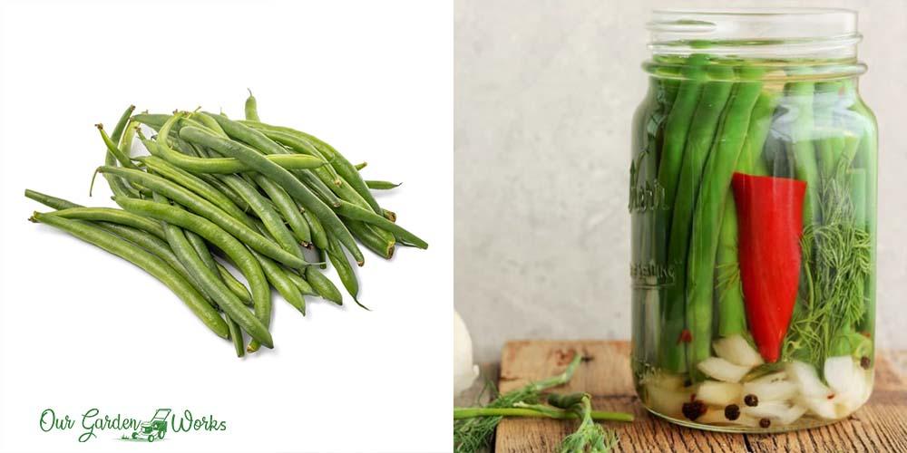 How To Store Fresh Green Beans & Prolong Their Shelf Life